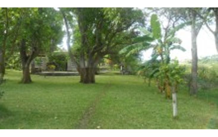 Foto de rancho en venta en  , lindavista, pueblo viejo, veracruz de ignacio de la llave, 1149555 No. 06
