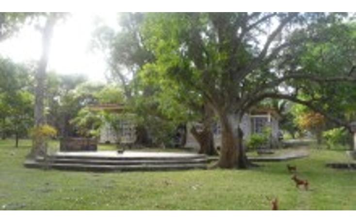 Foto de rancho en venta en  , lindavista, pueblo viejo, veracruz de ignacio de la llave, 1149555 No. 07