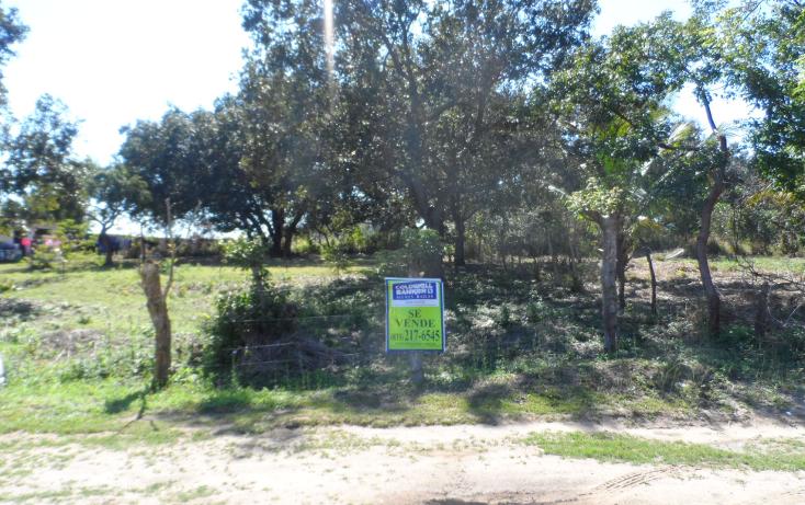Foto de terreno habitacional en venta en  , lindavista, pueblo viejo, veracruz de ignacio de la llave, 1246601 No. 01