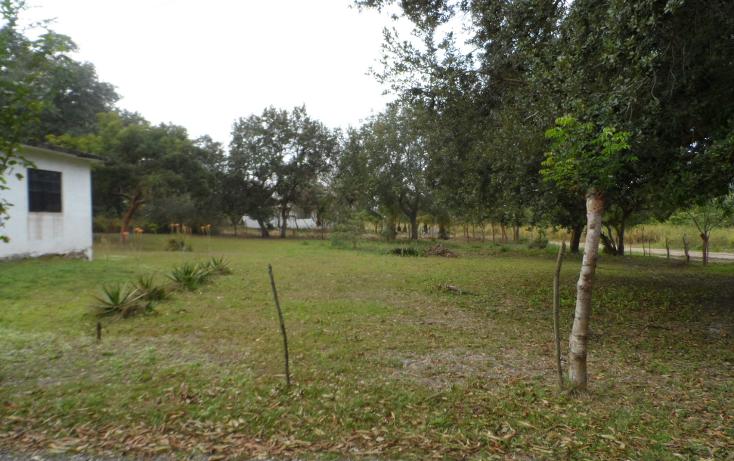 Foto de terreno habitacional en venta en  , lindavista, pueblo viejo, veracruz de ignacio de la llave, 1246601 No. 02