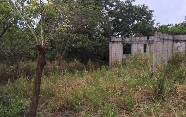 Foto de terreno habitacional en venta en  , lindavista, pueblo viejo, veracruz de ignacio de la llave, 1252199 No. 04