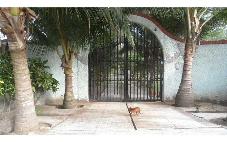 Foto de terreno habitacional en venta en  , lindavista, pueblo viejo, veracruz de ignacio de la llave, 1262417 No. 02