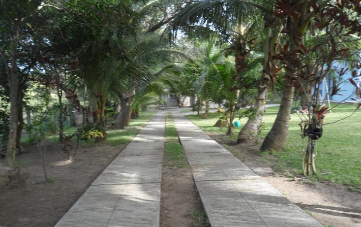 Foto de terreno habitacional en venta en  , lindavista, pueblo viejo, veracruz de ignacio de la llave, 1266347 No. 03