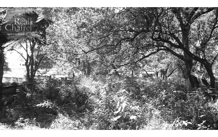 Foto de terreno habitacional en venta en  , lindavista, pueblo viejo, veracruz de ignacio de la llave, 1370619 No. 01
