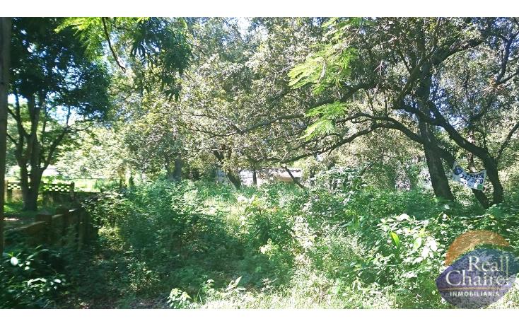 Foto de terreno habitacional en venta en  , lindavista, pueblo viejo, veracruz de ignacio de la llave, 1370619 No. 02