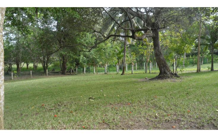 Foto de terreno habitacional en venta en  , lindavista, pueblo viejo, veracruz de ignacio de la llave, 943667 No. 03