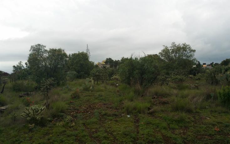 Foto de terreno habitacional en venta en  , lindavista, zempoala, hidalgo, 1259447 No. 05