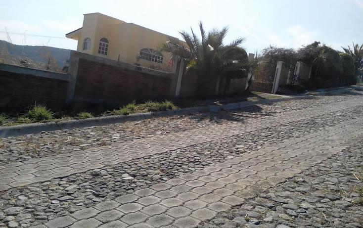 Foto de terreno habitacional en venta en  , llano de san diego, ixtapan de la sal, m?xico, 1039169 No. 02