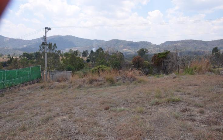 Foto de terreno habitacional en venta en  , llano de san diego, ixtapan de la sal, m?xico, 1039169 No. 05