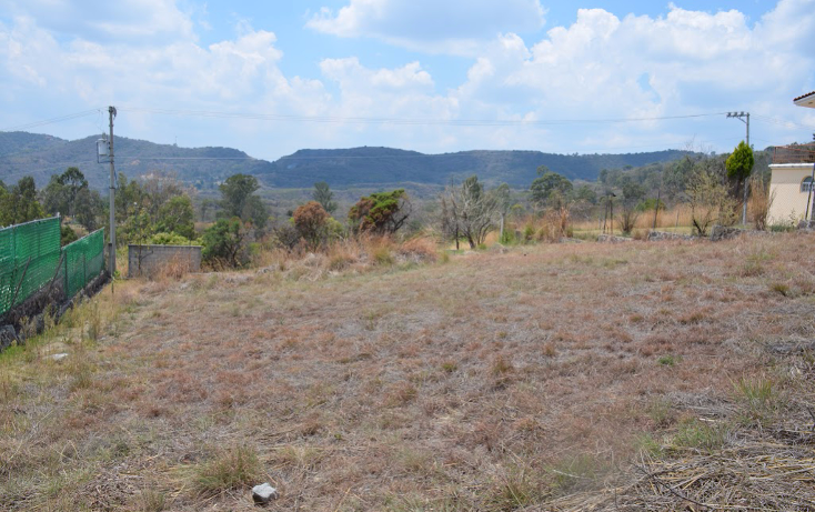 Foto de terreno habitacional en venta en  , llano de san diego, ixtapan de la sal, m?xico, 1039169 No. 06