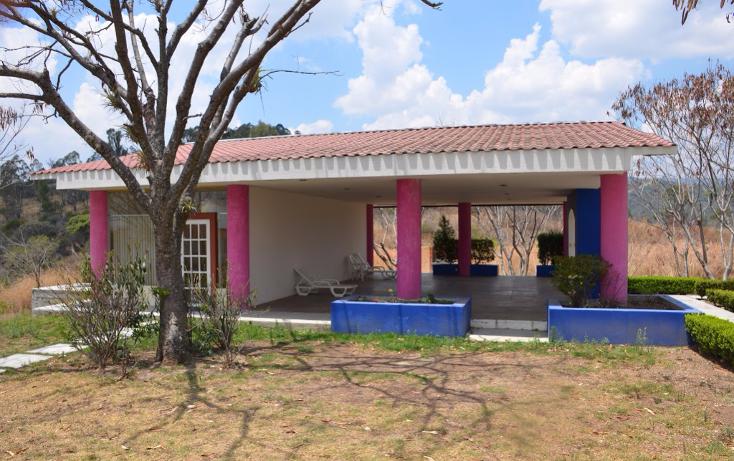Foto de terreno habitacional en venta en  , llano de san diego, ixtapan de la sal, m?xico, 1039169 No. 07