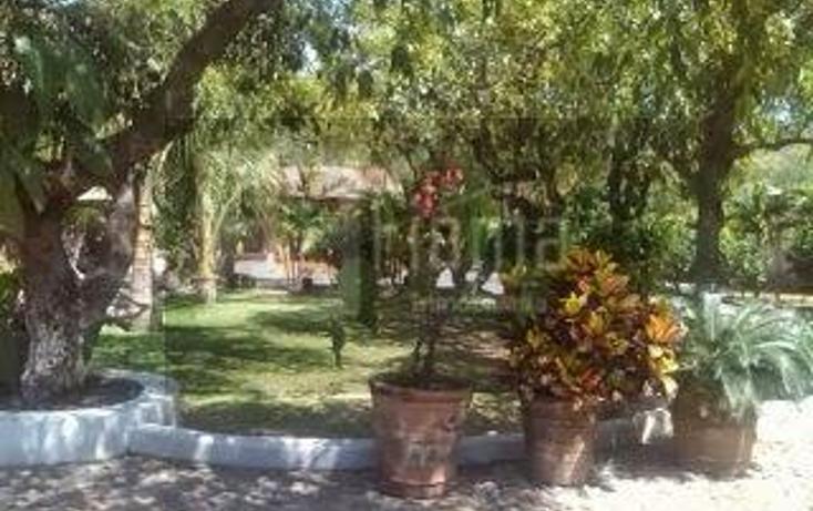 Foto de rancho en venta en  , lo de lamedo, tepic, nayarit, 1069691 No. 03