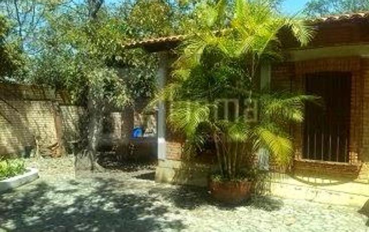 Foto de rancho en venta en  , lo de lamedo, tepic, nayarit, 1069691 No. 05