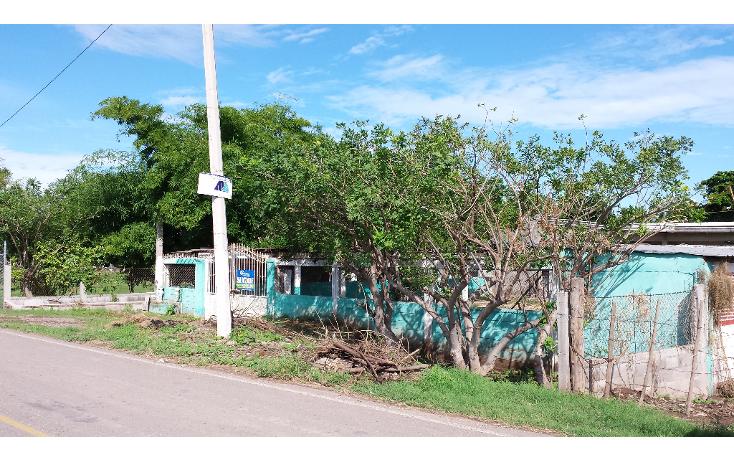 Foto de rancho en venta en  , lo de sauceda, navolato, sinaloa, 1142323 No. 02