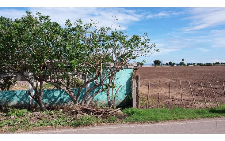 Foto de rancho en venta en  , lo de sauceda, navolato, sinaloa, 1142323 No. 03