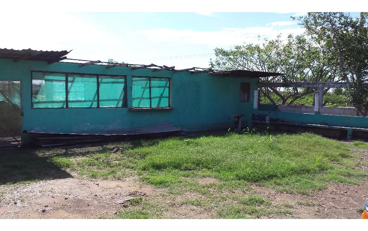 Foto de rancho en venta en  , lo de sauceda, navolato, sinaloa, 1142323 No. 11