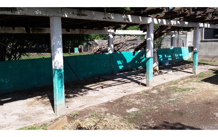 Foto de rancho en venta en  , lo de sauceda, navolato, sinaloa, 1142323 No. 12