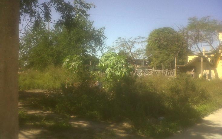Foto de terreno habitacional en venta en  , loma alta, altamira, tamaulipas, 1112625 No. 04