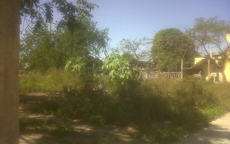 Foto de terreno habitacional en venta en  , loma alta, altamira, tamaulipas, 1715314 No. 04