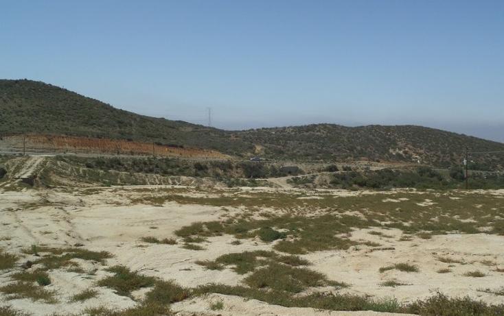 Foto de terreno comercial en venta en  , loma alta, tecate, baja california, 1191937 No. 10