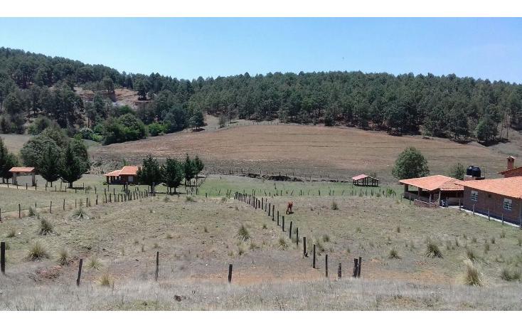 Foto de rancho en venta en loma bonita , juanacatlan, tapalpa, jalisco, 3422805 No. 03