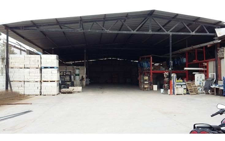 Foto de nave industrial en venta en  , loma bonita, puerto vallarta, jalisco, 1303689 No. 02