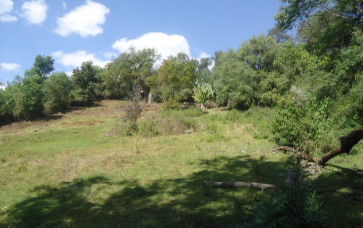 Foto de terreno habitacional en venta en loma de chihuahua sn, avándaro, valle de bravo, estado de méxico, 1697988 no 02