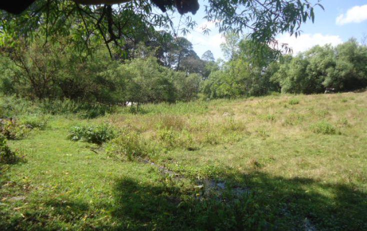 Foto de terreno habitacional en venta en loma de chihuahua sn, avándaro, valle de bravo, estado de méxico, 1697988 no 05