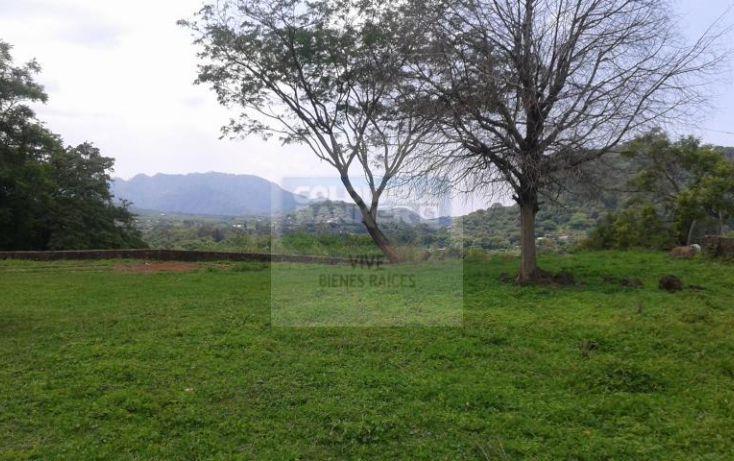 Foto de terreno habitacional en venta en loma de la presa sn 1, san josé, tepoztlán, morelos, 1028979 no 04