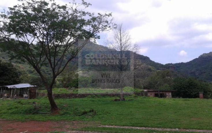 Foto de terreno habitacional en venta en loma de la presa sn 1, san josé, tepoztlán, morelos, 1028979 no 07