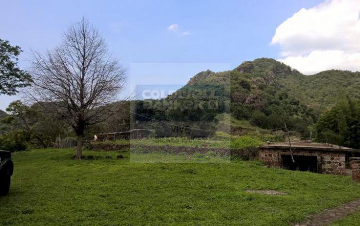 Foto de terreno habitacional en venta en loma de la presa sn 1, san josé, tepoztlán, morelos, 1028979 no 11