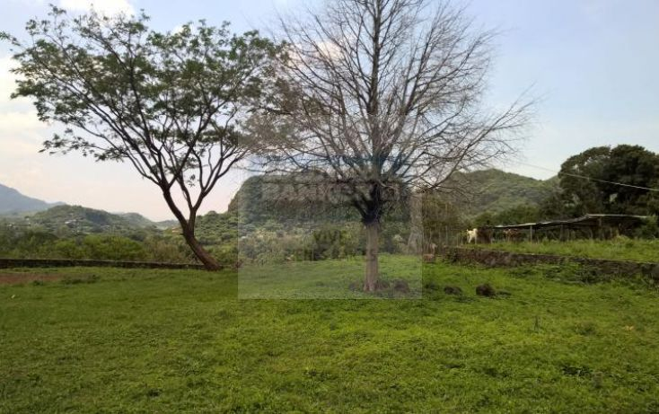 Foto de terreno habitacional en venta en loma de la presa sn 1, san josé, tepoztlán, morelos, 1028979 no 12
