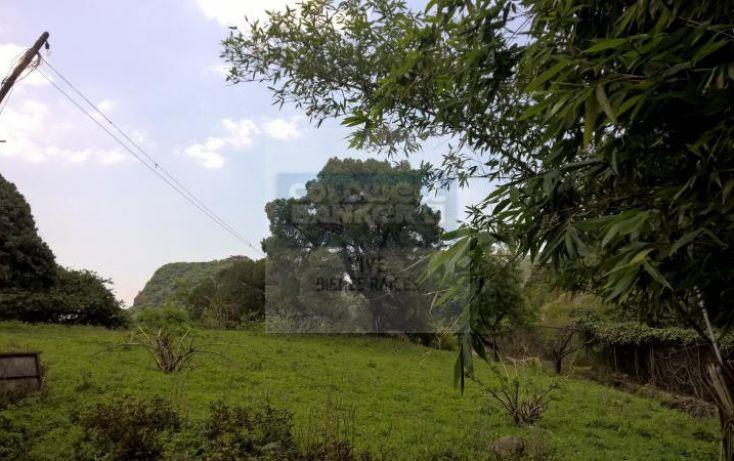 Foto de terreno habitacional en venta en loma de la presa sn 1, san josé, tepoztlán, morelos, 1028979 no 13
