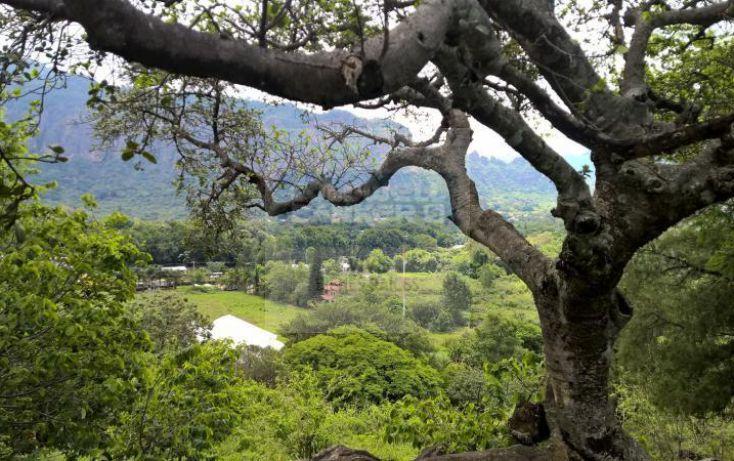 Foto de terreno habitacional en venta en loma de la presa sn 1, san josé, tepoztlán, morelos, 1028979 no 14