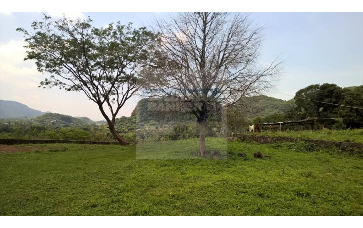 Foto de terreno comercial en renta en loma de la presa sn , san josé, tepoztlán, morelos, 1842290 No. 12