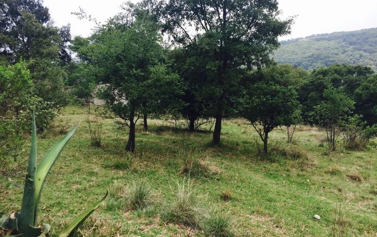 Foto de terreno habitacional en venta en  , loma del río, nicolás romero, méxico, 1177205 No. 01