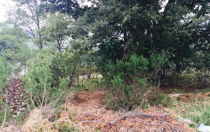 Foto de terreno habitacional en venta en  , loma del río, nicolás romero, méxico, 1177205 No. 02