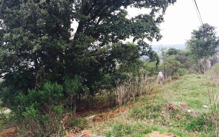 Foto de terreno habitacional en venta en  , loma del río, nicolás romero, méxico, 1177205 No. 04