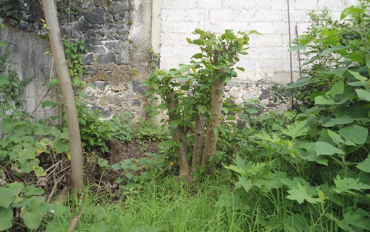Foto de casa en venta en  , loma del suchill, coatepec, veracruz de ignacio de la llave, 1679972 No. 23