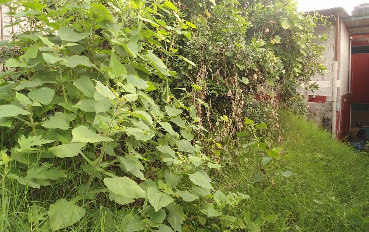 Foto de casa en venta en  , loma del suchill, coatepec, veracruz de ignacio de la llave, 1679972 No. 24