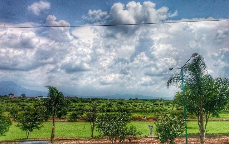 Foto de terreno habitacional en venta en  , loma linda, tangancícuaro, michoacán de ocampo, 3427680 No. 05