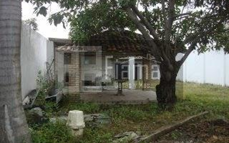 Foto de casa en renta en  , lomas bonitas, tepic, nayarit, 1165145 No. 31