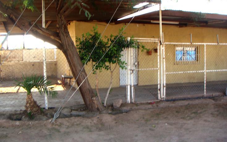 Foto de casa en venta en las lomas , lomas de abasolo, mexicali, baja california, 1223481 No. 01