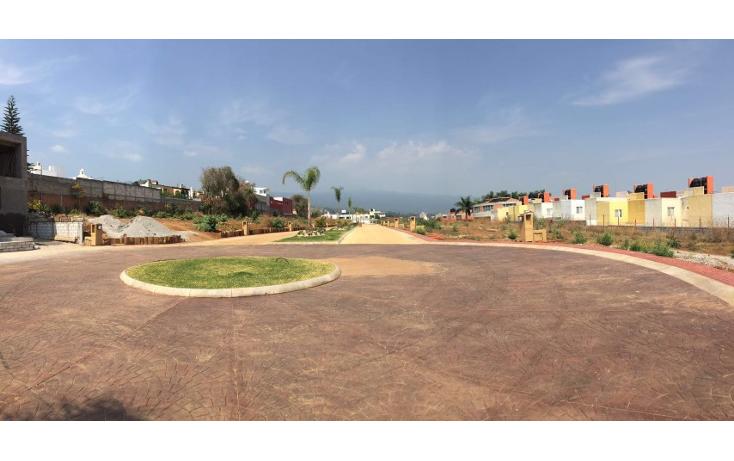 Foto de terreno habitacional en venta en  , lomas de ahuatlán, cuernavaca, morelos, 1145537 No. 05