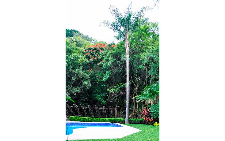 Foto de casa en renta en  , lomas de atzingo, cuernavaca, morelos, 1052435 No. 33