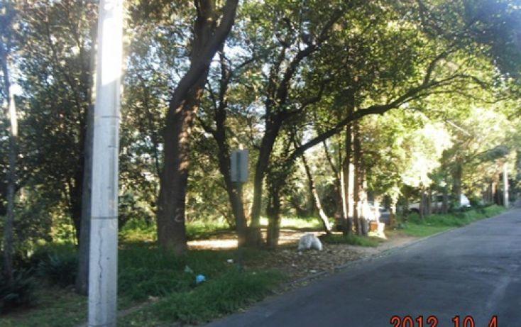 Foto de departamento en renta en, lomas de chapultepec i sección, miguel hidalgo, df, 2026571 no 07