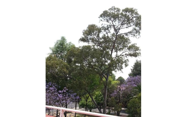 Foto de casa en renta en  , lomas de chapultepec i sección, miguel hidalgo, distrito federal, 1229527 No. 05
