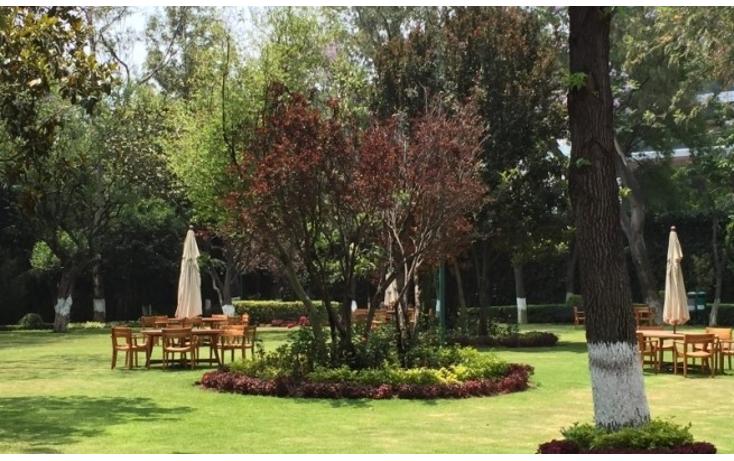 Foto de departamento en renta en  , lomas de chapultepec i sección, miguel hidalgo, distrito federal, 1557408 No. 08