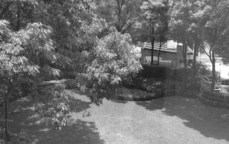 Foto de departamento en venta en  , lomas de chapultepec i sección, miguel hidalgo, distrito federal, 1907548 No. 16