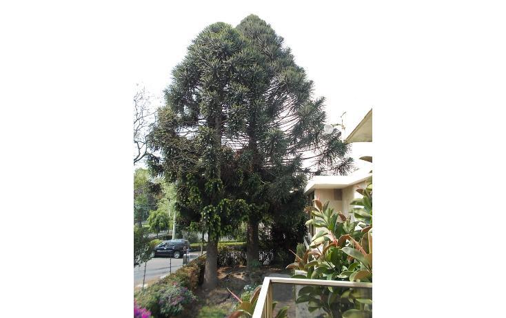 Foto de casa en venta en  , lomas de chapultepec ii sección, miguel hidalgo, distrito federal, 456607 No. 08